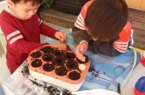 Gardening with preschoolers: Small investment, huge rewards